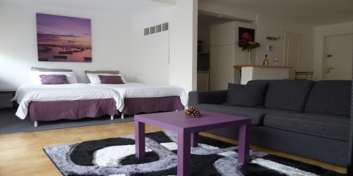 Modern and spacious studio 10 min from palais