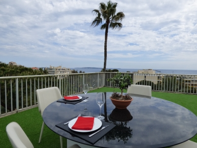 Superb Rooftop 3 Bedrooms with Sea View, 7-20mn from Palais des Festivals